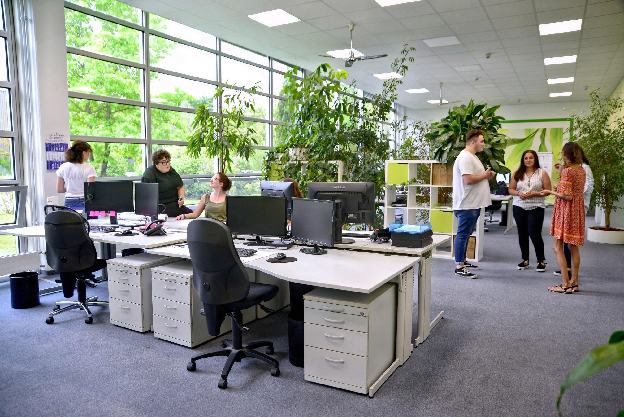 krauss-arbeitsplatz